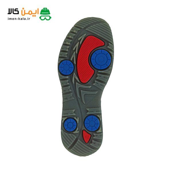 کفش التن